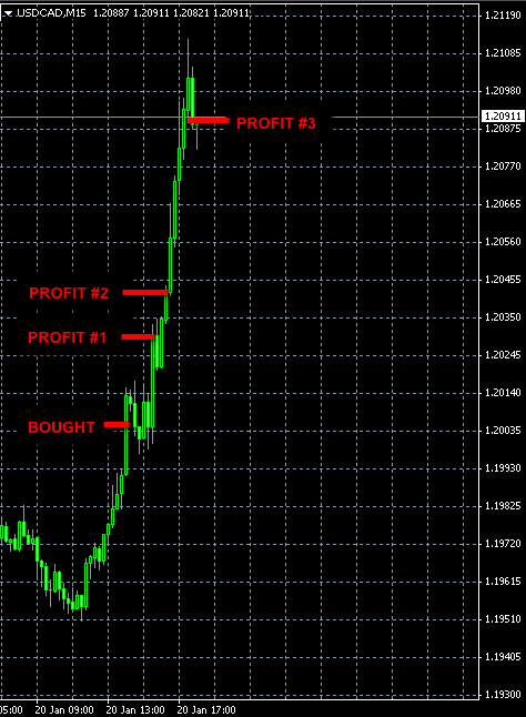 best FOREX signal USDCAD jan20