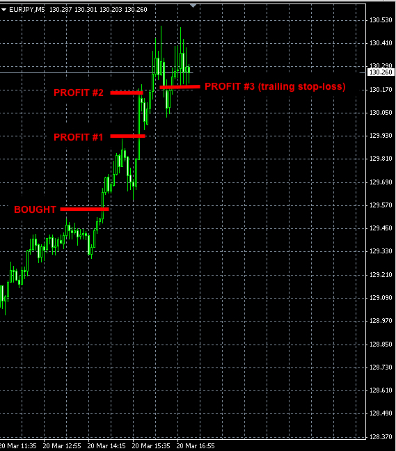 Copy the best forex traders